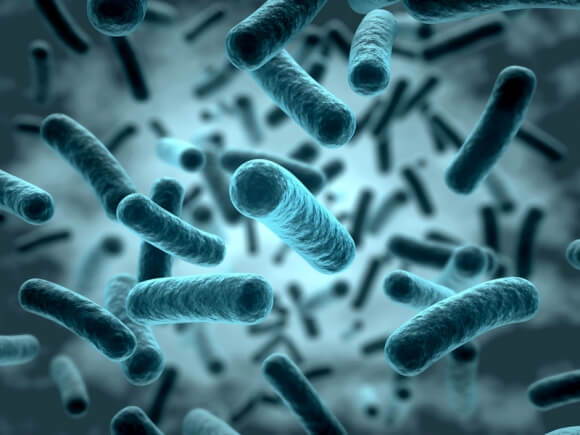 Les bactéries, une cause d'incontinence à ne pas oublier!