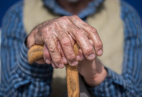 Des recherches sur l'apeline redonnent espoir aux séniors